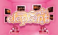 elephantcafe